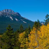 гора цвета осени Стоковое Изображение RF