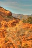 гора 6 пустынь Стоковое Фото