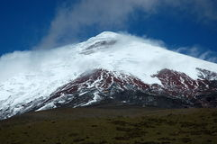 гора andes cotopaxi эквадора Стоковое фото RF