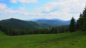 Гора Apuseni Zona Padis Румыния сток-видео