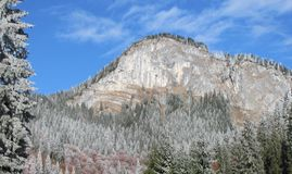 Гора Bucegi Стоковое Изображение RF