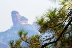 Гора Danxia с иглами сосны стоковые фотографии rf
