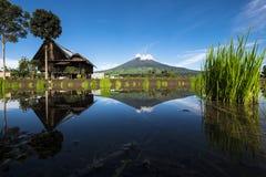 Гора Dempo Стоковое фото RF