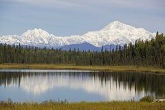 гора denali Аляски Стоковое Фото