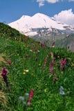 гора elbrus Стоковые Изображения