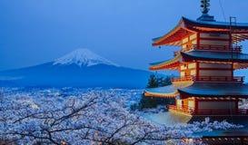 гора fuji Стоковые Фото