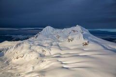 Гора Garibaldi предусматриванная в снеге Стоковое Фото