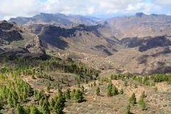 Гора Gran Canaria Стоковые Изображения