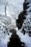 Гора huangshan Snowy стоковое изображение rf