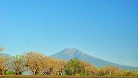 Гора Ijen стоковая фотография