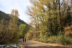 гора joggers падения каньона Стоковая Фотография RF