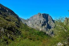 Гора Lansdcape Стоковая Фотография RF