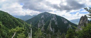 Гора Mala Fatra, Словакия, Европа стоковые фотографии rf