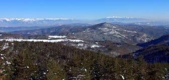 Гора Osogovo, Болгария, Европа Стоковые Изображения RF