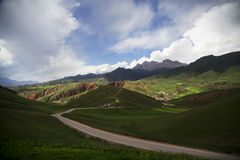 Гора Qilian, злаковики Стоковые Фото