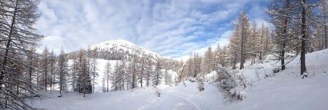 Гора Snowy Стоковое Изображение RF
