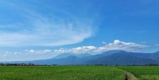 Гора Ungaran Стоковое Изображение RF