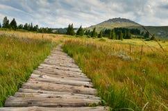 Гора Vitosha Стоковая Фотография