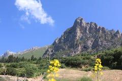 Гора Zhagana Стоковое Изображение RF