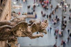 Горгулья, взгляд от крыши собора Duomo в милане Стоковые Изображения RF