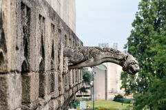 Горгулья замка Нанта Стоковые Фото