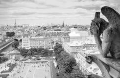 Горгулья химеры собора Парижа Нотр-Дам Стоковое фото RF