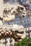 Горгульи в Париже Стоковые Фото