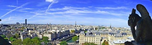 Горгулья и вид на город от крыши Нотр-Дам de Парижа Стоковая Фотография RF