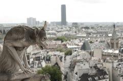 Горгулья на соборе Нотр-Дам, Париже Стоковые Изображения RF