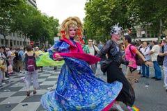 гордость 2010 Франции голубая paris Стоковые Фото