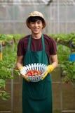 Гордый садовник с сбором Стоковые Фотографии RF