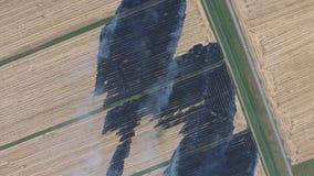 Горение соломы риса в полях Курите от горения соломы риса в проверках Пожар на поле стоковое фото