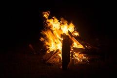 Горение Firewoods Стоковые Изображения RF