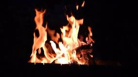 Гореть вносит дальше огонь в журнал на ноче видеоматериал