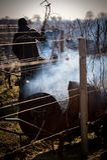 Гореть лоз в зиме, виноградник, СВЯТОЙ-EMILIOn AOC, ЖИРОНДА Стоковая Фотография