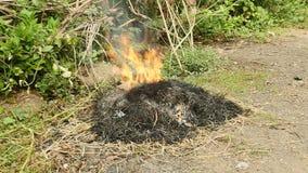 Гореть отхода двора, горящий хлам, трава ожога