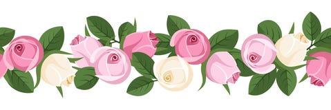 Горизонтальная безшовная предпосылка с розовыми бутонами. Стоковые Фото