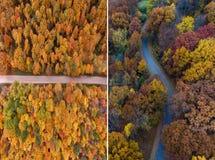 Горизонтальная вертикальная перпендикулярная осень Стоковые Фото