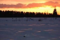 горизонтальная зима захода солнца Стоковые Изображения