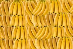 Горизонтальное знамя много зрелого пука банана Концепция здоровой еды Стоковое Изображение