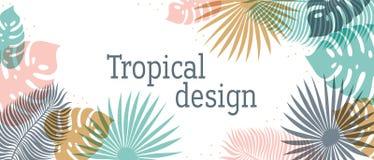 Горизонтальный тропический заголовок в пастельных цветах Дизайн лета тропический с экзотическими листьями ладони Monstera, ладонь иллюстрация вектора