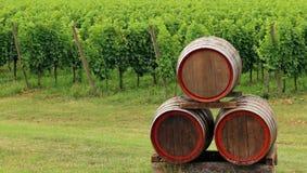 3 горизонтальных бочонка вина штабелированного перед виноградниками Стоковые Фото