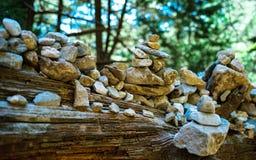 Горизонтальное яркое раздумье Дзэн камня лесного дерева цвета Стоковые Фотографии RF