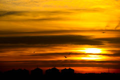 Горизонт города на заходе солнца Стоковое Изображение