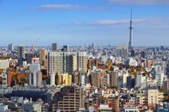 Горизонт города токио Стоковые Фотографии RF