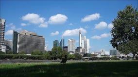 Горизонт города Timelapse на Франкфурте сток-видео