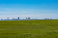 Горизонт за болотом Стоковое Изображение