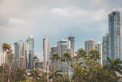 Горизонт здания небоскреба и пальмы - skyli Панама (город) Стоковое Изображение RF