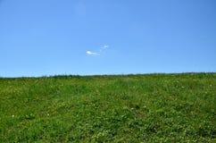 Горизонт - зеленый луг и голубое небо Стоковые Фотографии RF