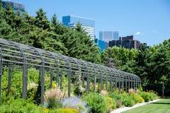 Горизонт Миннеаполиса от парка скульптуры Стоковое фото RF